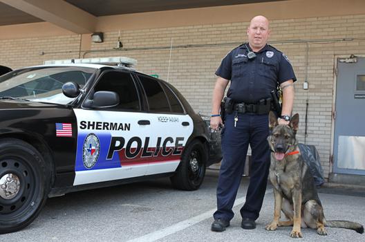 Police Dog Training Dallas Tx